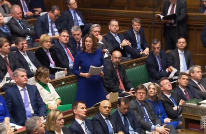 Gillian in House of Commons Chamber